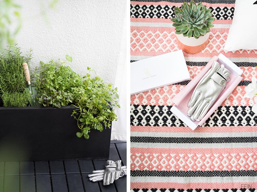 Balkonsaison Pflanzen