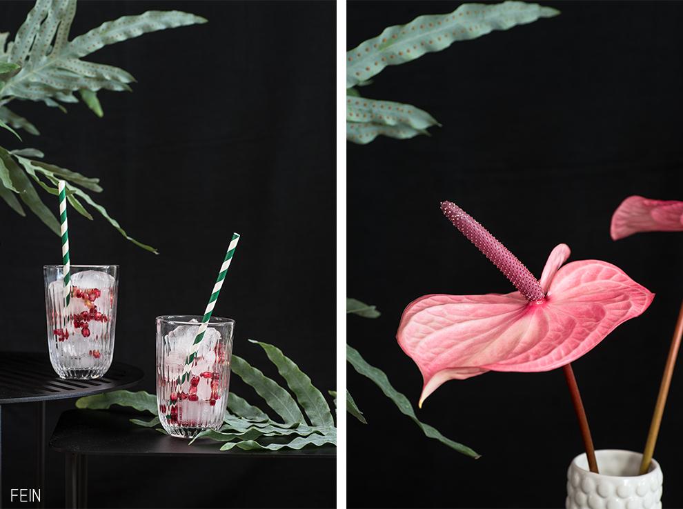 Sommer Cocktail Rezepte