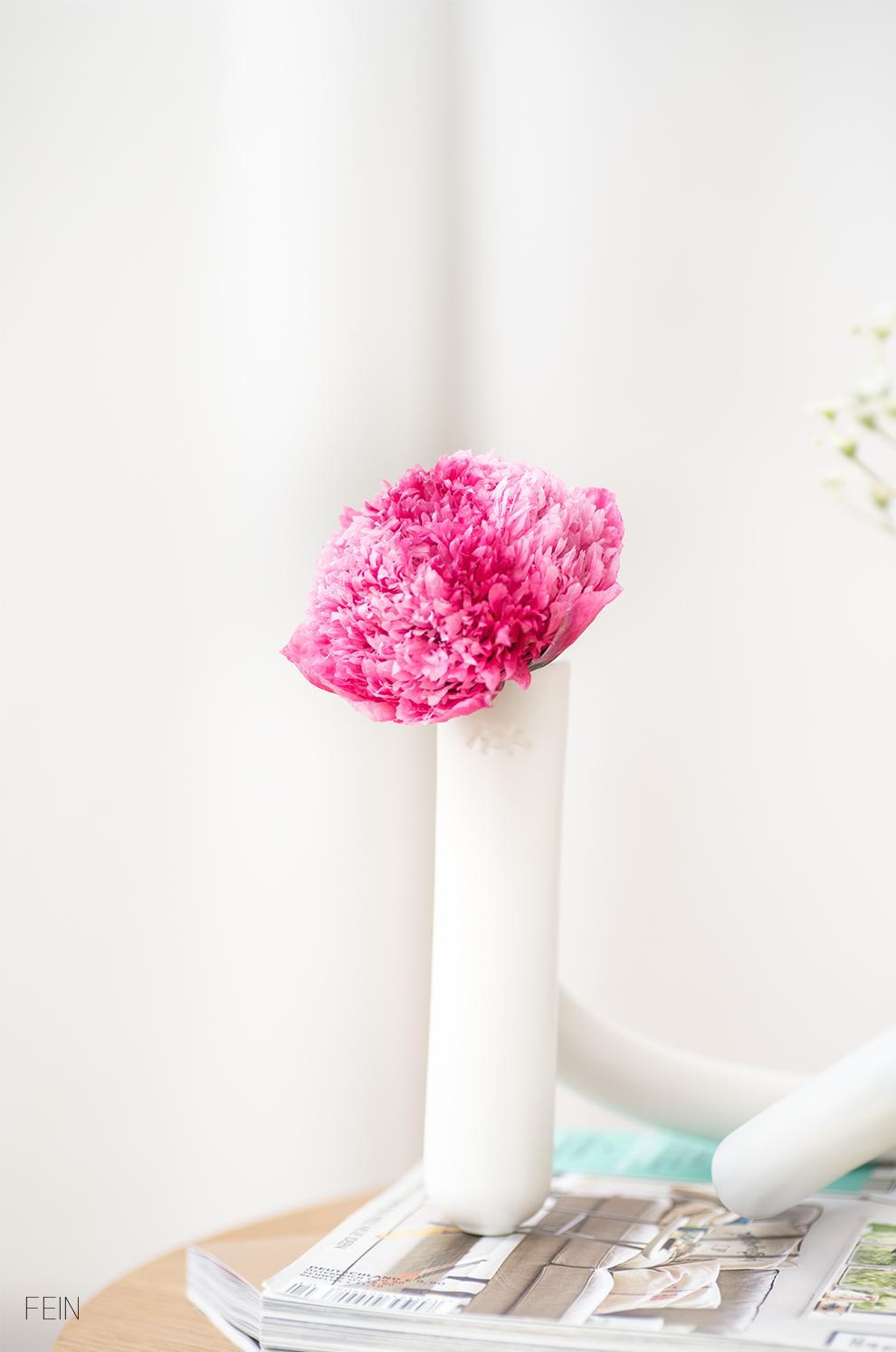 Sommerwiese Wohnzimmer Blumen