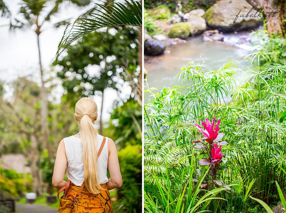 Bali Ubud Natur Urwald Regenwald Dschungel Maya Resort Flitterwochen Urlaub 3