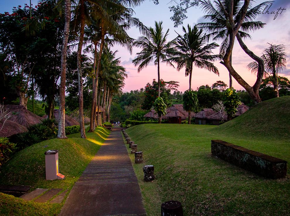 Bali Ubud Natur Urwald Regenwald Dschungel Maya Resort Flitterwochen Urlaub 6