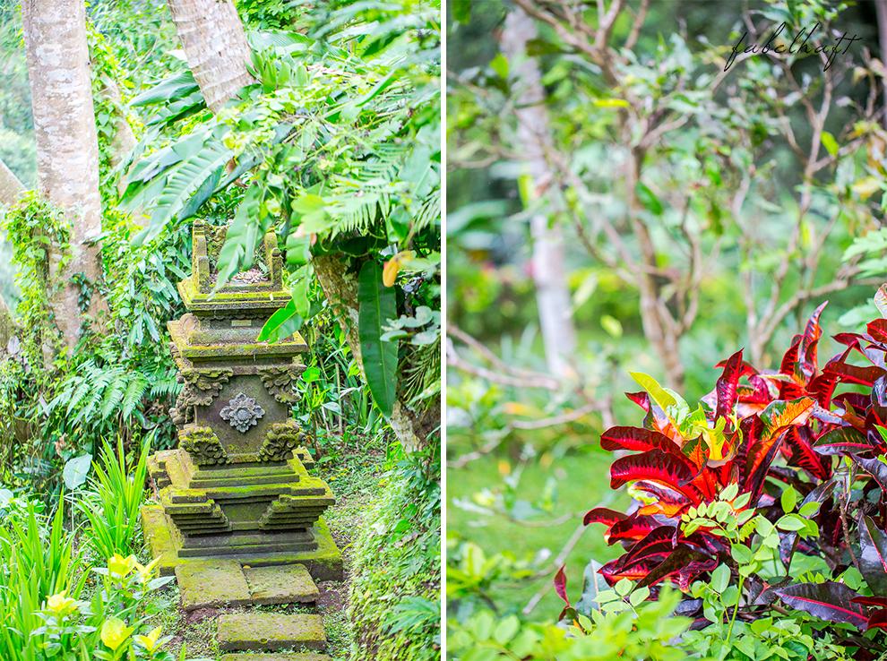 Bali Ubud Natur Urwald Regenwald Dschungel Maya Resort Flitterwochen Urlaub