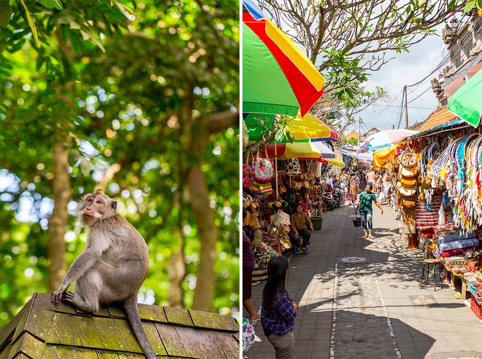 Ubud Bali Markt Korbwaren Stand Tradition Kultur Stadt 4
