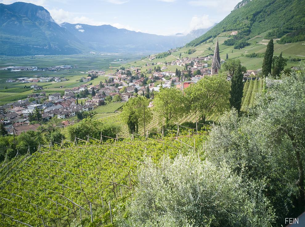 Wein genuss Südtirol