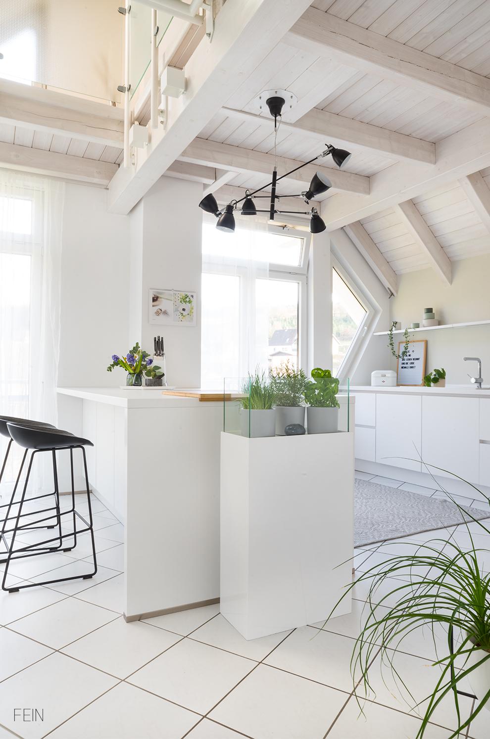 Pflanzen Kräuter und Zimmerpflanzen