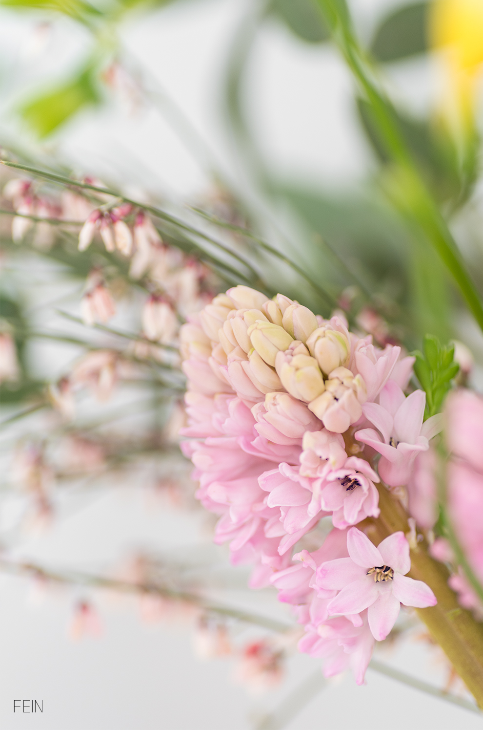 Zarte Töne Frühling