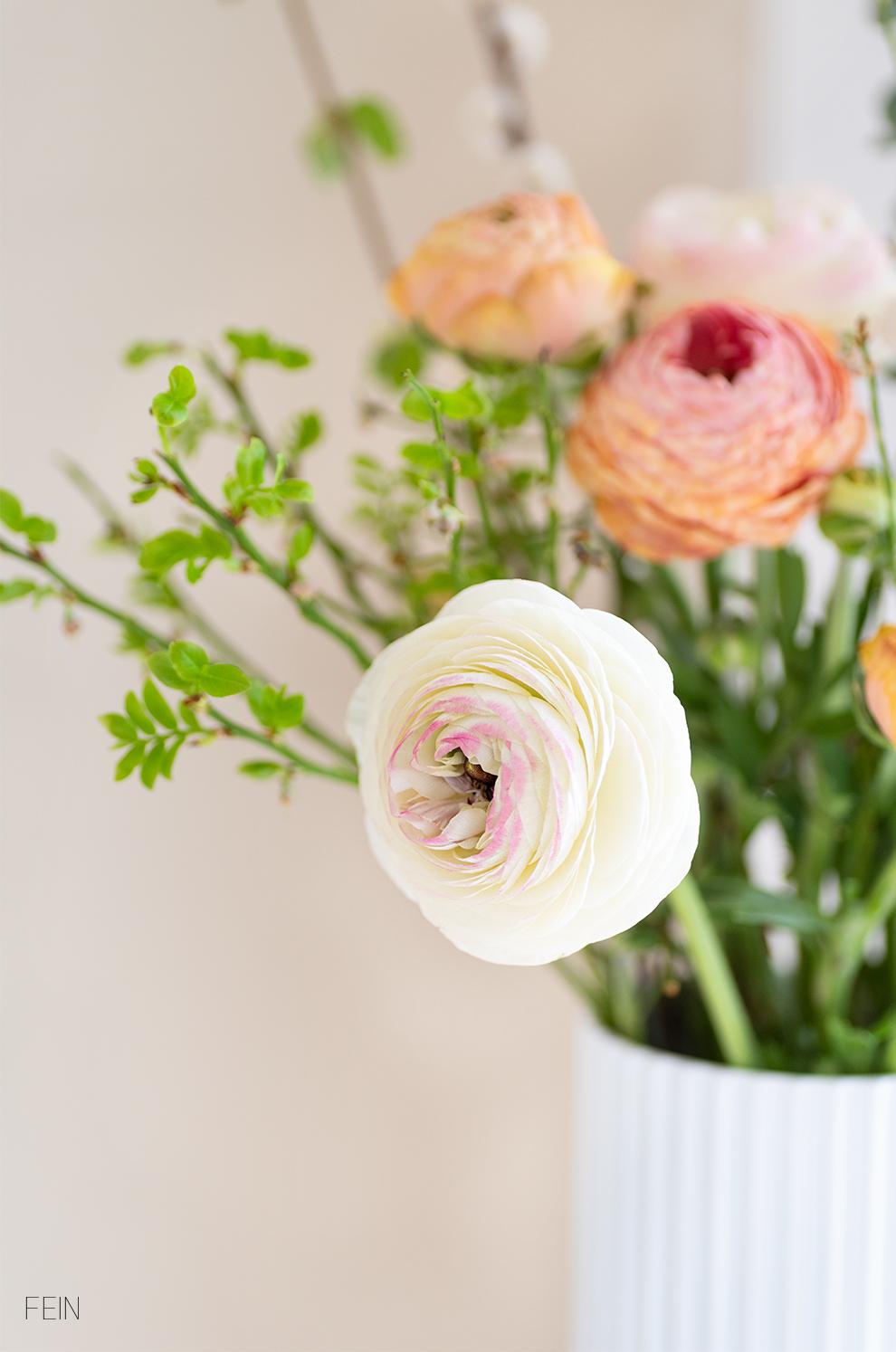 Farbe Blüten