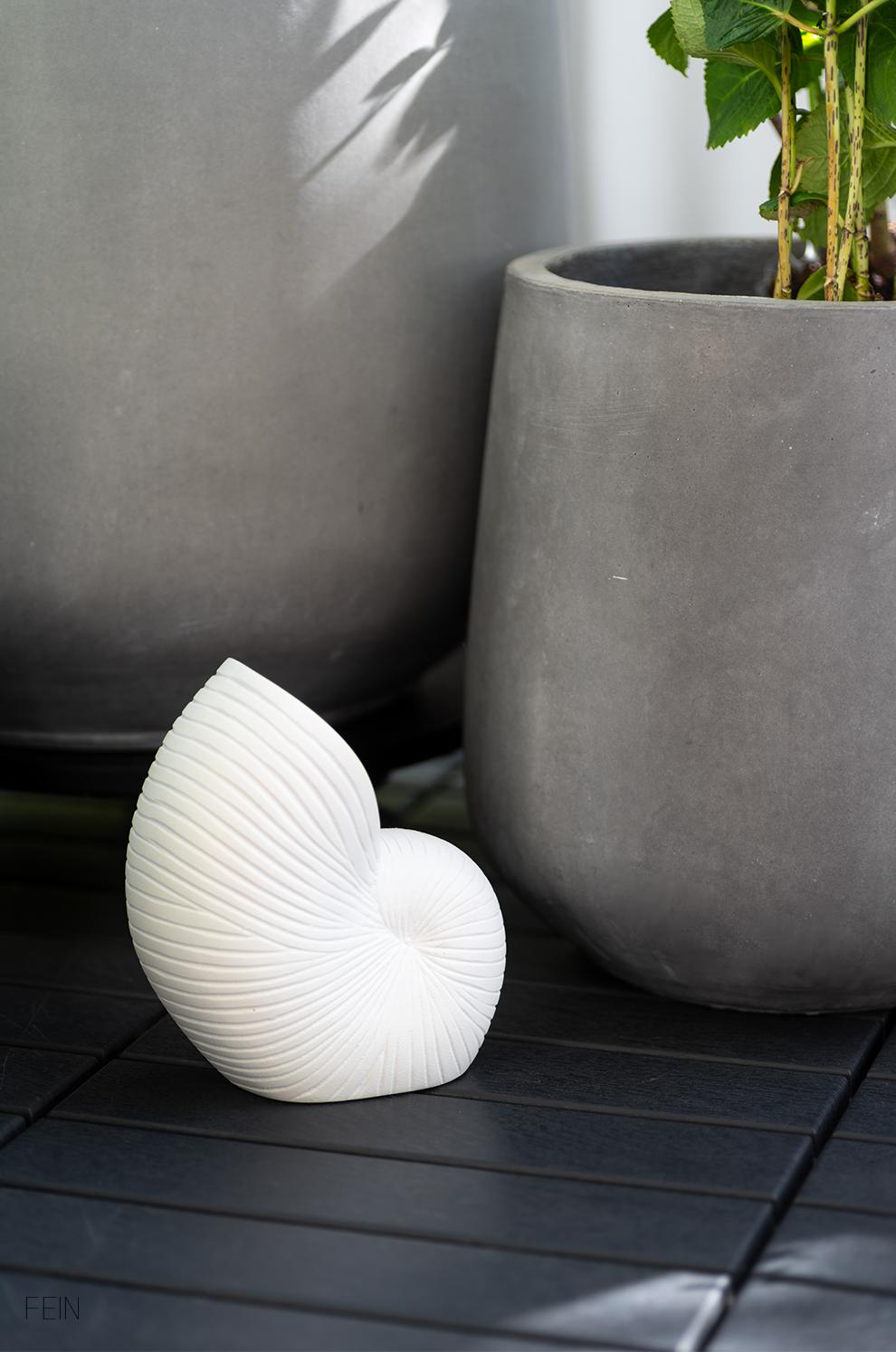 Muschel Vase