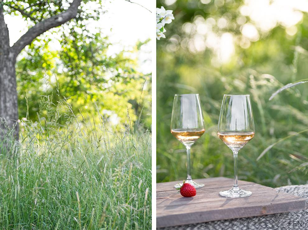 Picknick Sommer Wein Feld