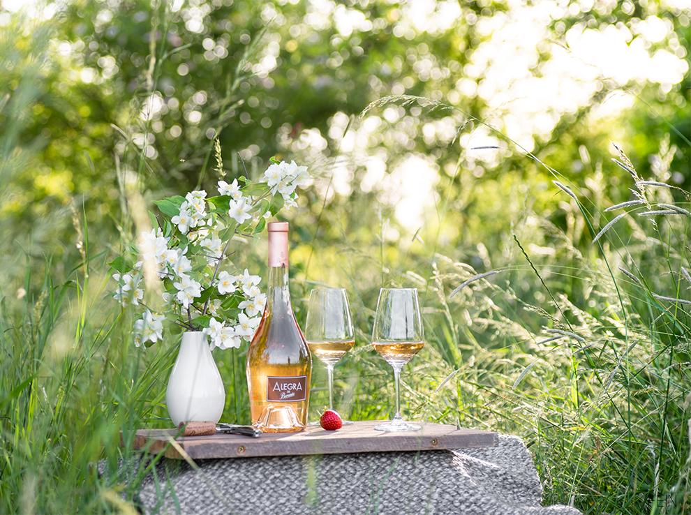 Picknick Sommer Wein
