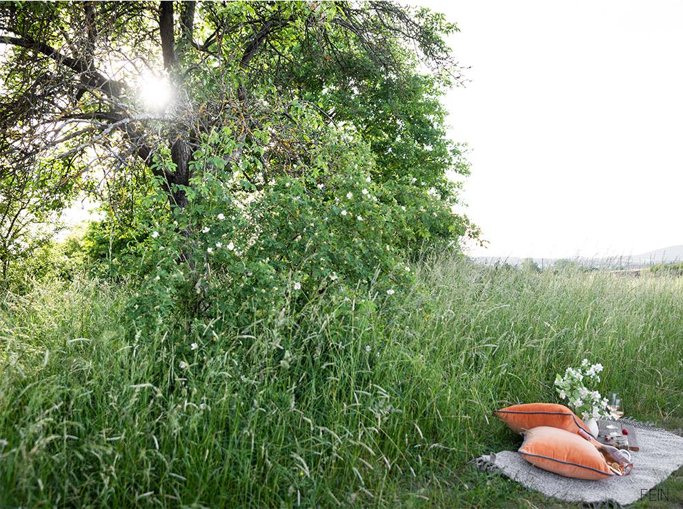 Picknick Sommer