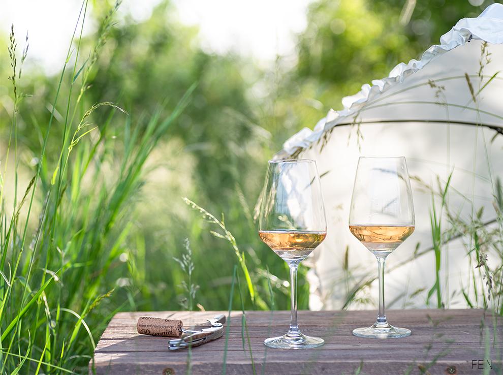Wein Rose Sommer