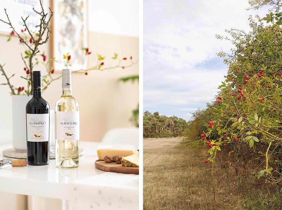Herbst Wein Chile