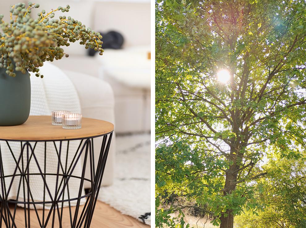 Herbstdeko Zweige