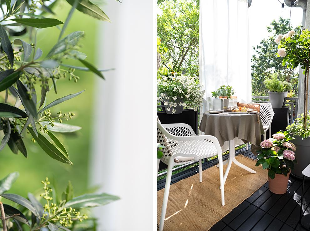Balkon Sommer 2021